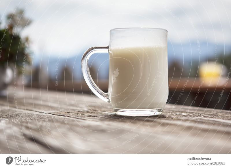delicious! Food Dairy Products Organic produce Beverage Cold drink Milk buttermilk Cup Mug Glass Agriculture Forestry Closing time Wood To enjoy Authentic