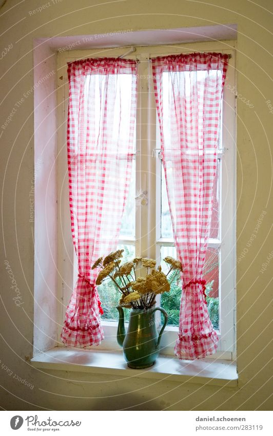 Old Window Style Bright Flat (apartment) Living or residing Decoration Bouquet Curtain Tradition Vase Flower vase