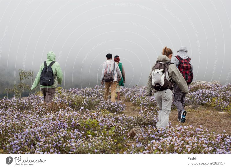 Nilgiri Sports Hiking Human being 5 18 - 30 years Youth (Young adults) Adults 30 - 45 years Environment Nature Landscape Plant Autumn Climate Bad weather Wind