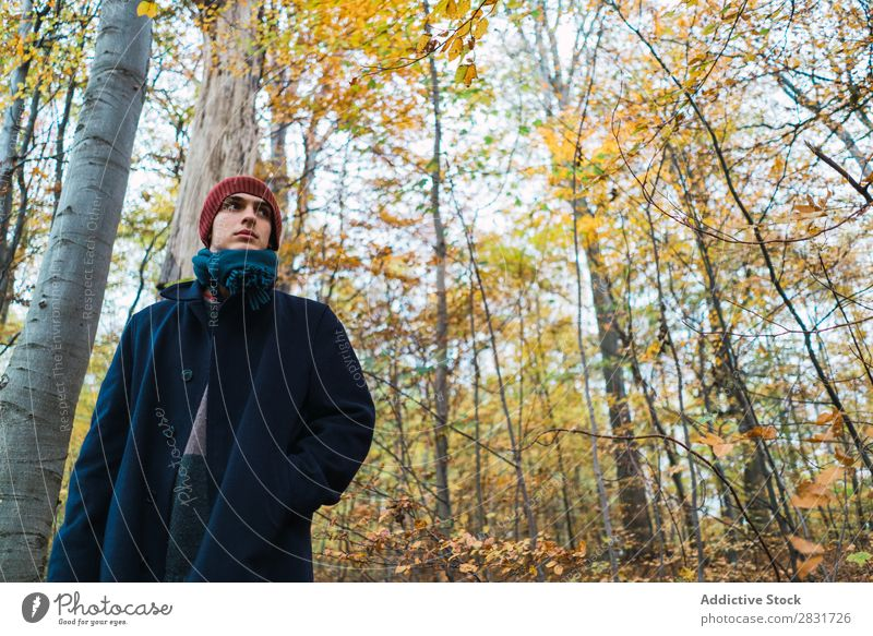 Man posing in autumnal wood Street Youth (Young adults) Town Lifestyle Easygoing Fashion Style warm clothes Adults Modern Human being Hip & trendy Guy