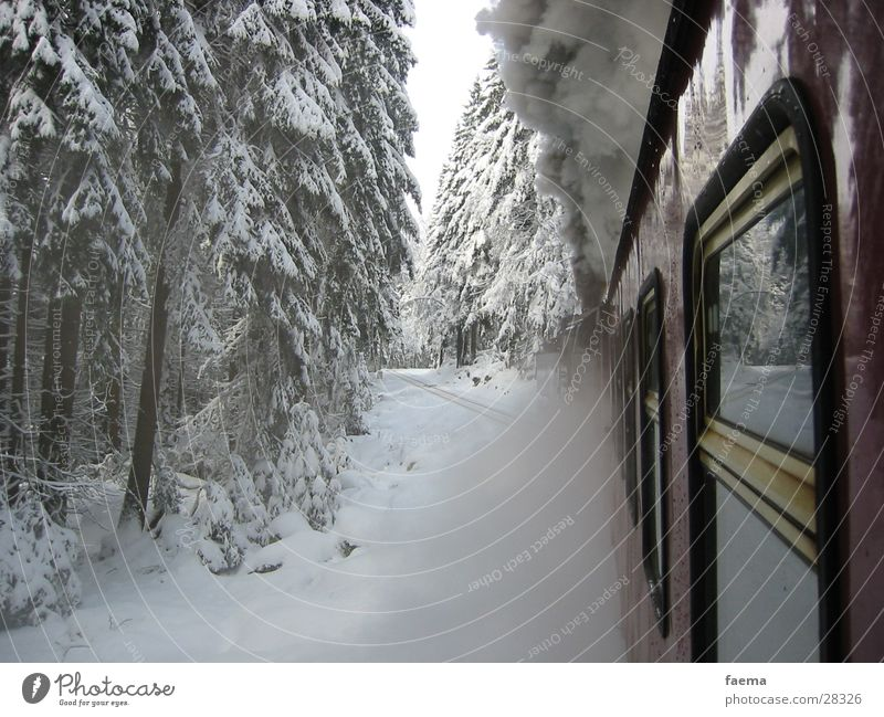 Orient Express Fir tree Dust Window Winter Transport Fragment Railroad Brocken Railway Steam steam block Snow Glass