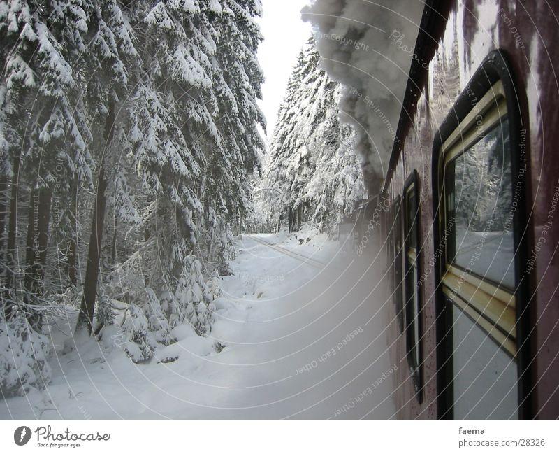 Winter Window Snow Transport Glass Railroad Fir tree Dust Steam Fragment