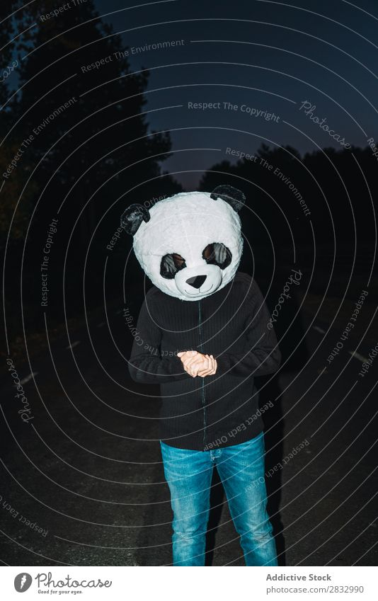 Man in panda mask Mask Peace Human being Panda Idea Easygoing Cute Costume Trip Rest Funny Faceless Unrecognizable Anonymous Vertical Street Night Forest Nature