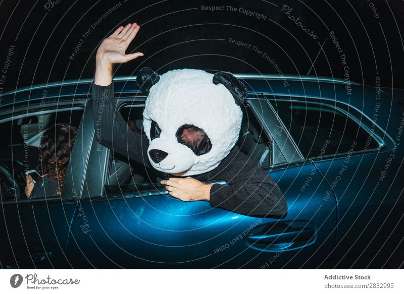 Man in panda mask leaning out of car window Mask Peace Gesture Human being Panda Indicate Back Seat Passenger compartment Car Vehicle Transport Hand