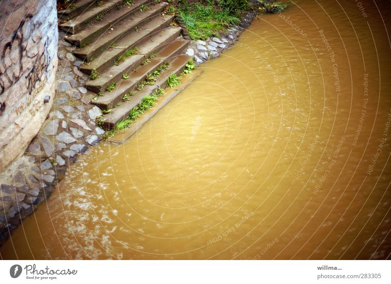 Nature Water Yellow Environment Wall (barrier) Brown Stairs Dirty River River bank Environmental pollution Steep Survive Go under Apocalypse Muddy