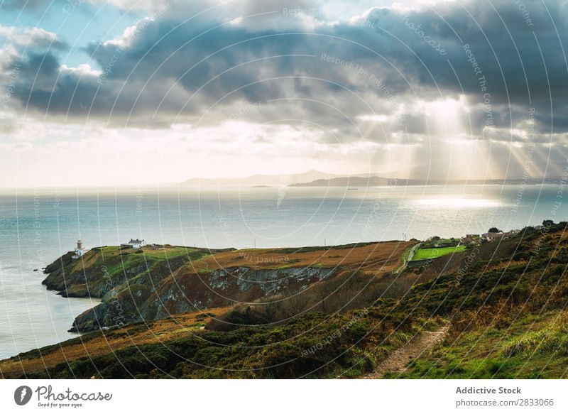 Picturesque view to green coast Coast Rock Ocean Landscape Beach Nature Water Natural