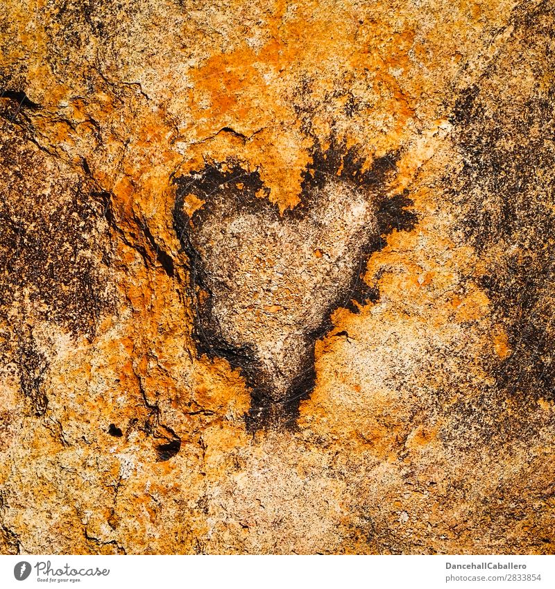 stoneheart Environment Nature Elements Climate change Rock Stone Heart Emotions Happy Happiness Contentment Joie de vivre (Vitality) Spring fever Power Passion