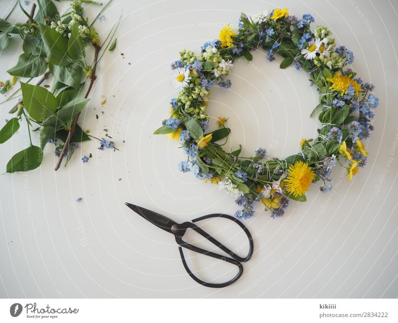 spring wreath Nature Spring Plant Flower Leaf Blossom Wild plant Daisy Forget-me-not Dandelion Flower wreath Garden Accessory Decoration Bouquet Blossoming