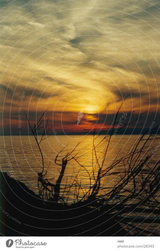 Sunset I Ocean Beach Goodbye Light Water Evening