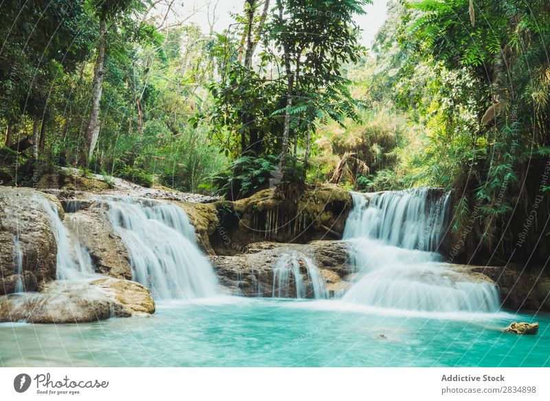 Beautiful small waterfalls flowing Forest cascade Nature Landscape Water Vacation & Travel River Waterfall Park Green Stream Tourism Flow scenery Virgin forest