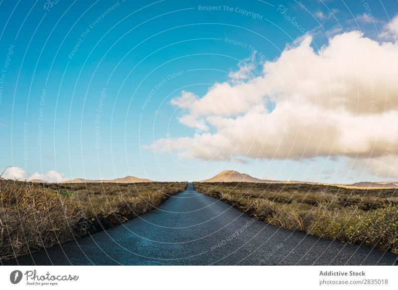 Landscape of road in field Field Dry Clouds Nature Natural Rock Stone Lanzarote Spain Vantage point Vacation & Travel Tourism Trip Yellow Hill tranquil