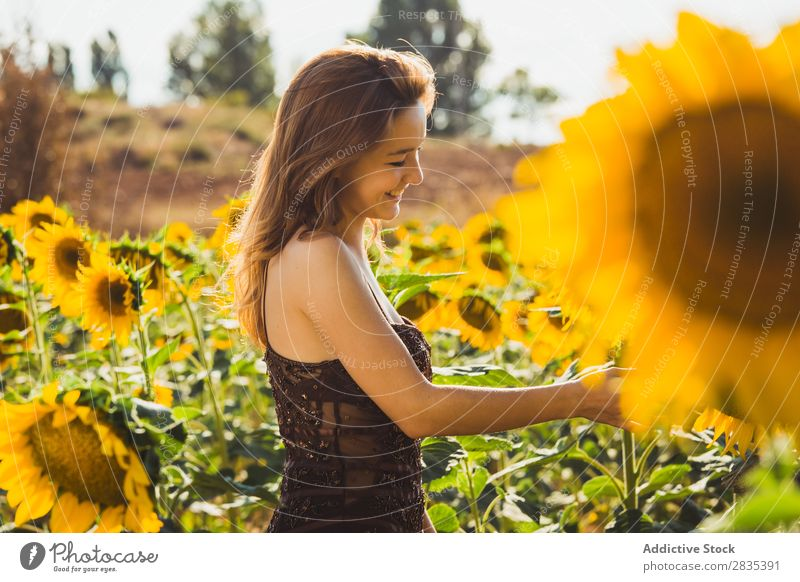 Pretty young woman in sunflowers Woman pretty Field Dress Youth (Young adults) Nature Beautiful Summer Happiness Yellow Portrait photograph Cheerful