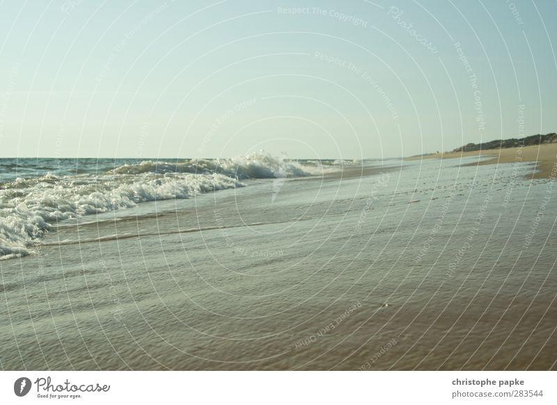 Simply sea Vacation & Travel Summer vacation Ocean Waves Cloudless sky Coast Beach Atlantic Ocean Colour photo Exterior shot Deserted Copy Space top Day