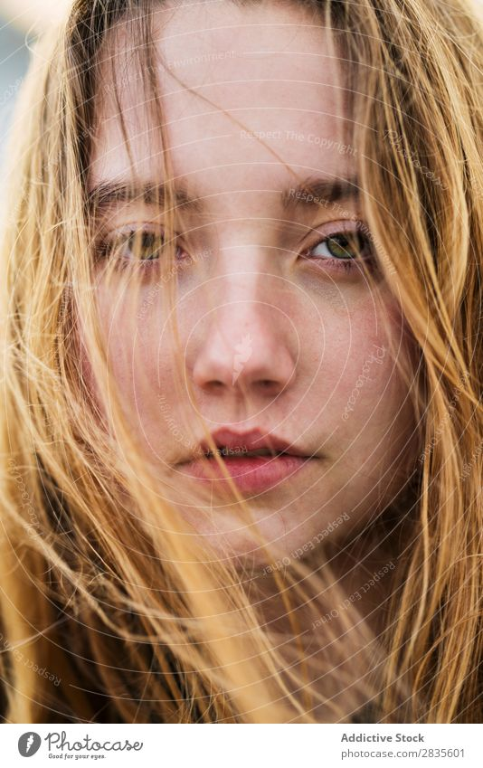 Face of pretty girl Woman Portrait photograph Youth (Young adults) Beautiful Looking into the camera Flying Hair Dream Considerate Pensive Close-up Girl