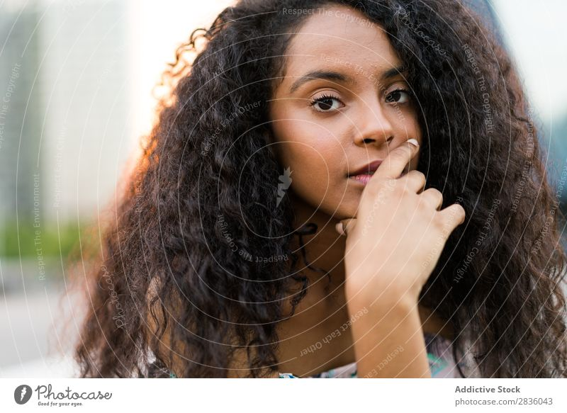Young black woman looking at camera Woman pretty Youth (Young adults) Portrait photograph Looking into the camera Black African Head Beautiful Curly Brunette