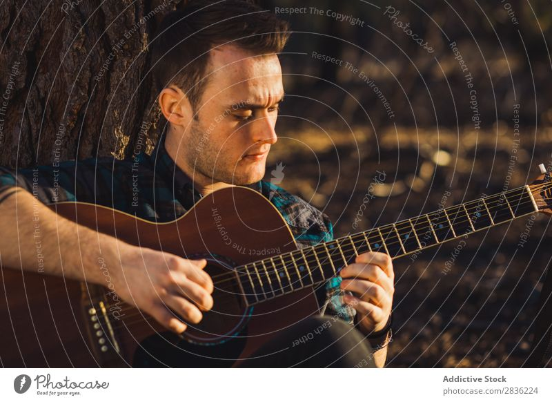 Man playing guitar in nature Guitar Nature Music Forest Sunbeam Day Lean Sit Trunk Lifestyle Musician Easygoing Guitarist Acoustic Autumn Musical Human being