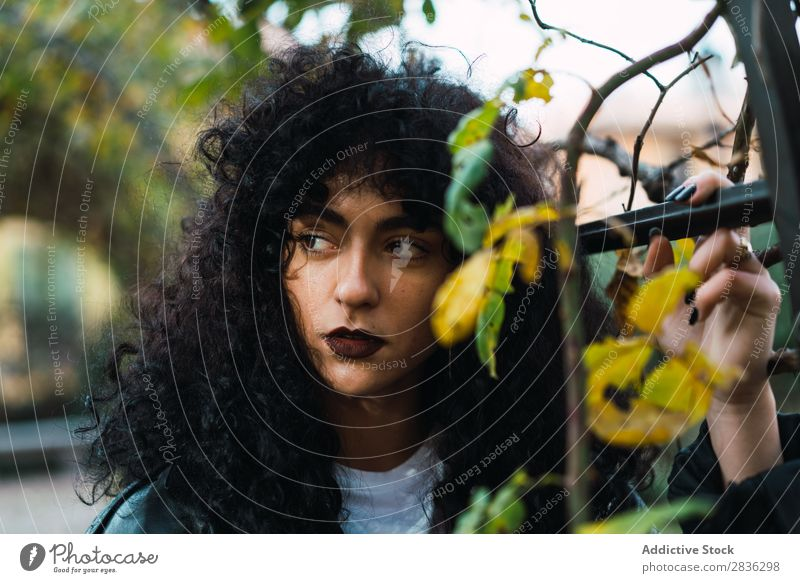 Young curly woman in park Woman Attractive City fashionable Curly Brunette Park Autumn Leaf Jacket Fashion Youth (Young adults) Beautiful pretty Street Model