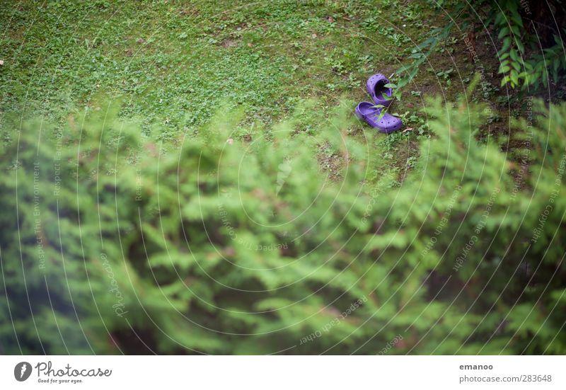 lonely rubber clothes Environment Nature Landscape Plant Grass Bushes Garden Park Footwear Flip-flops Green Violet Discovery crocks Sandal Rubber Gardening Lie