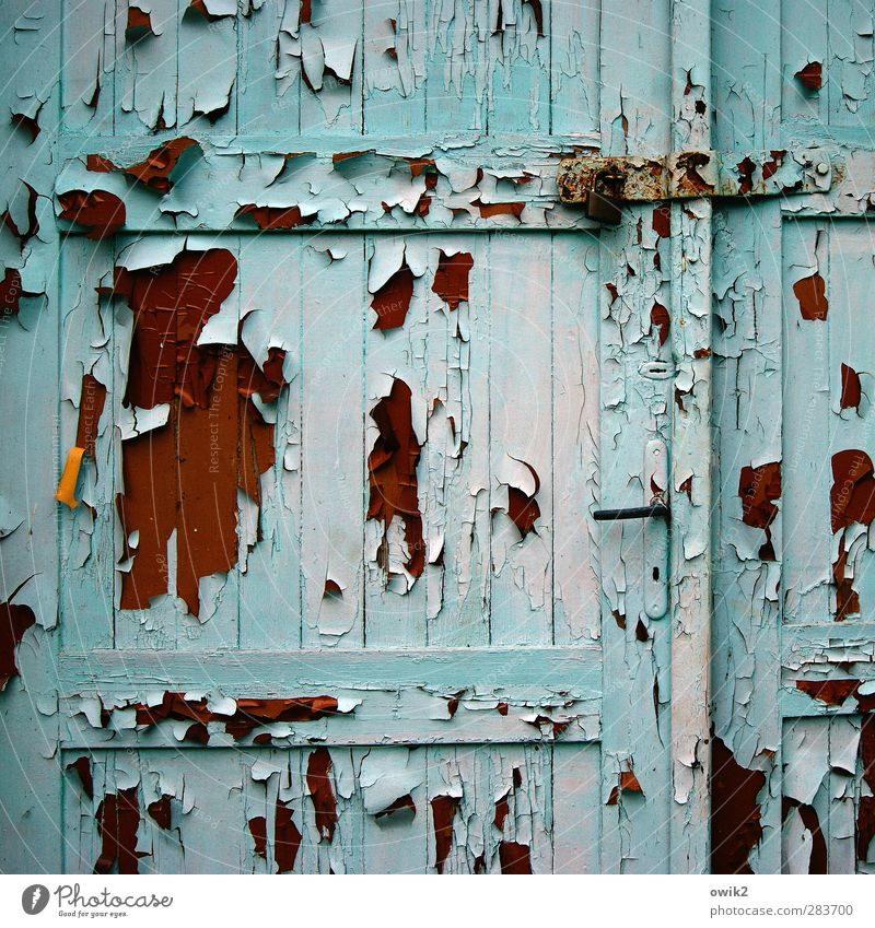 the course of events Door Wood Old Hang To dry up Historic Brown Orange Red Turquoise Colour Flake off Ravages of time Derelict Morbid Door handle Closed