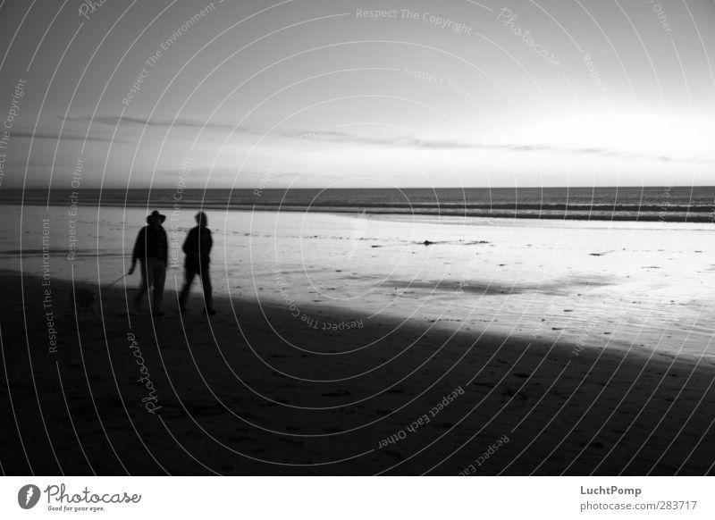 Old Friends Hiking Beach Ocean Water Sand Sandy beach 2 3 Horizon Shadow Silhouette Reflection Dog Man Friendship Connectedness Together Attachment Going