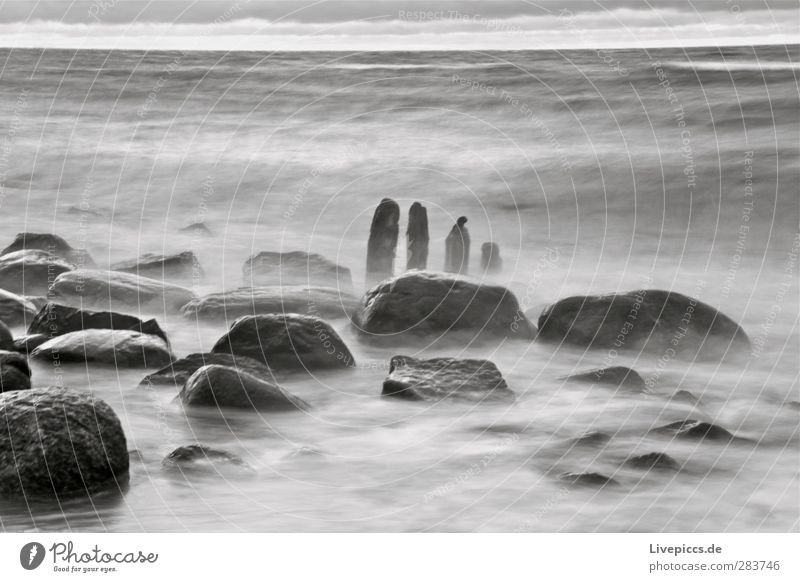 wild coast Environment Nature Landscape Water Autumn Bad weather Storm Wind Waves Coast Beach Baltic Sea Ocean Wood Wild Gray Black White Stone