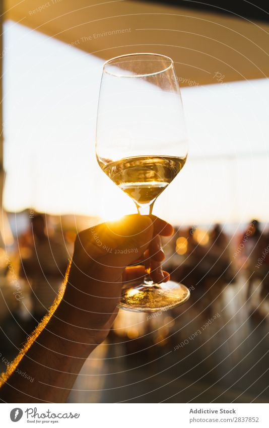 Crop hand holding wineglass Human being Wine glass Event Hand Sunlight Feasts & Celebrations White wine Toast Congratulations Restaurant Drinking