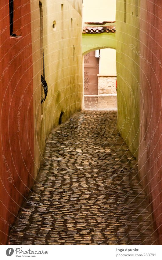 Old Vacation & Travel Street Wall (building) Lanes & trails Wall (barrier) Travel photography Tourism Europe Esthetic Floor covering Footpath Cobblestones