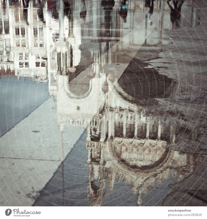 City Water Environment Architecture Building Church Places Wet Italy Tourist Attraction Crowd of people Puddle Venice Abstract St. Marks Square