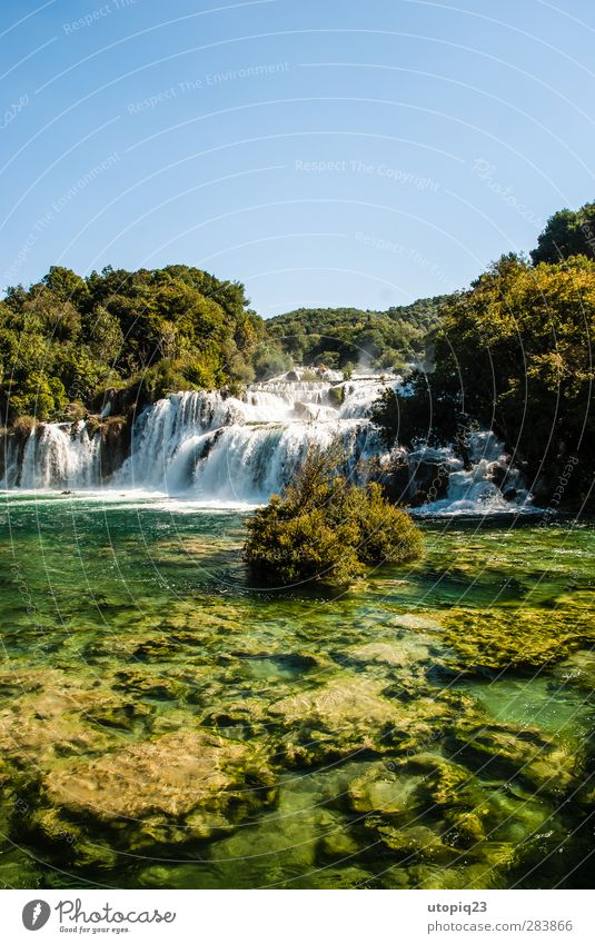 Noise in the forest Nature Landscape Water Cloudless sky Spring Summer Beautiful weather Forest Waterfall Krka Power Calm Life Environment Colour photo