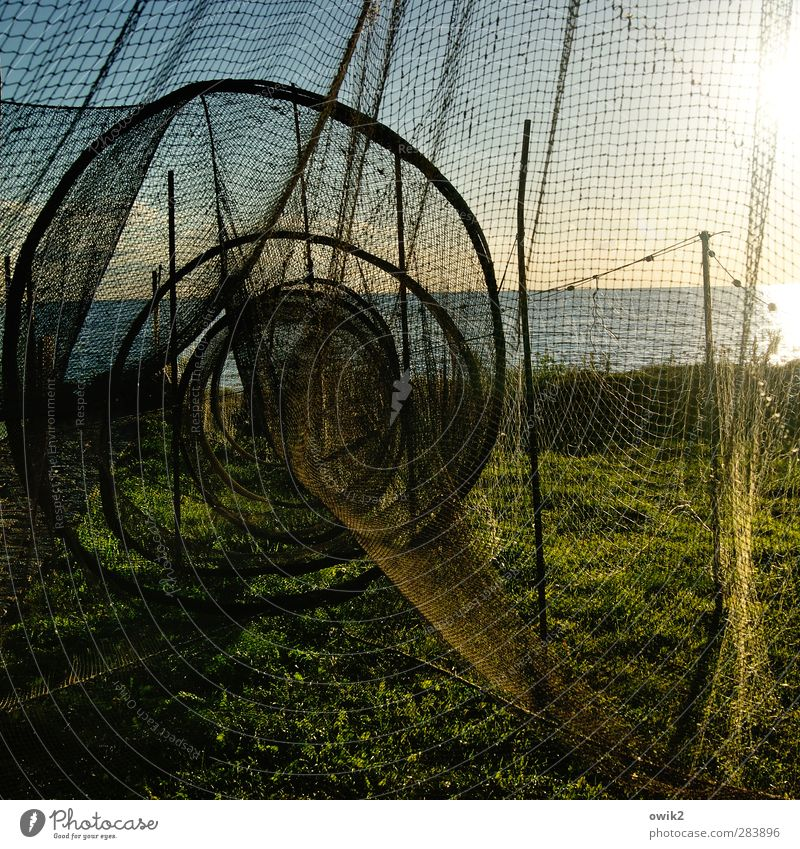 Silent days on Usedom Workplace Fishery Fishing net Fish trap Environment Nature Landscape Water Sky Horizon Climate Weather Beautiful weather Grass Baltic Sea