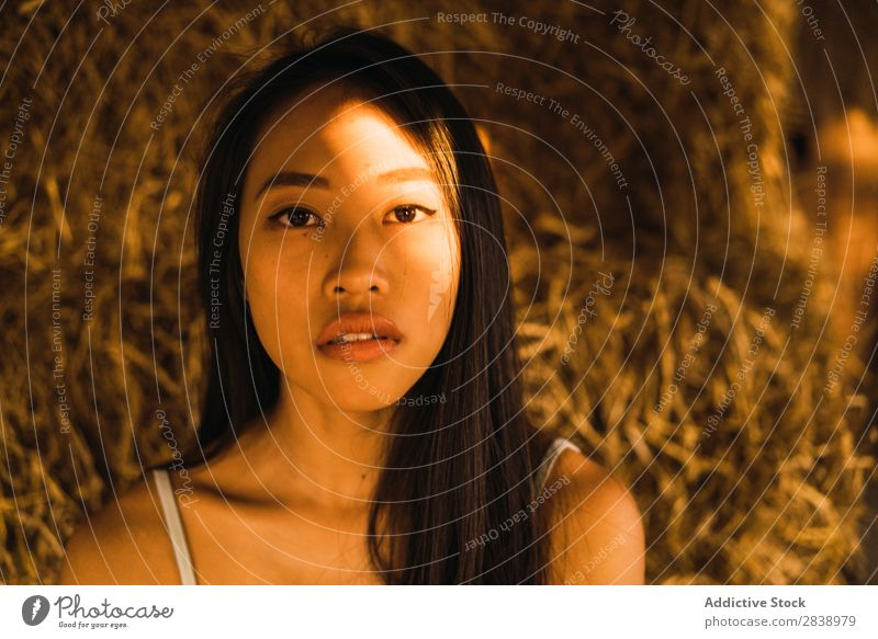 Asian woman posing on sunlight Woman pretty asian Youth (Young adults) Cheerful Happy Joy Brunette Beautiful Portrait photograph Attractive Beauty Photography