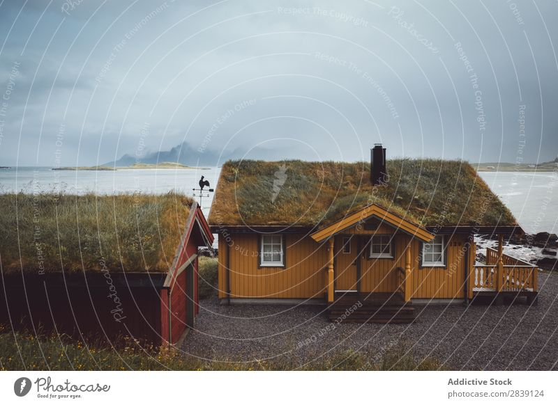 Houses on misty island House (Residential Structure) Island Village Coast Nature Lofoten scenery Landscape Ocean Picturesque Beautiful Vacation & Travel