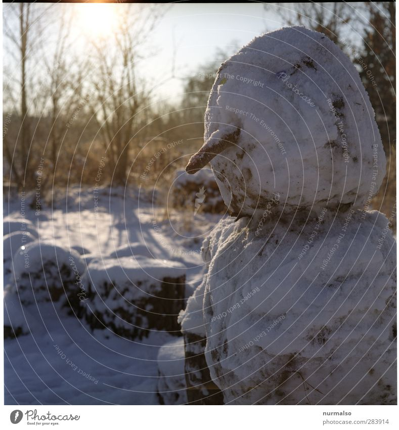 Dear snowman Lifestyle Winter Masculine 1 Human being Art Nature Beautiful weather Ice Frost Snow Park Sign Freeze Cold Funny Original Moody Joy Infancy Snowman