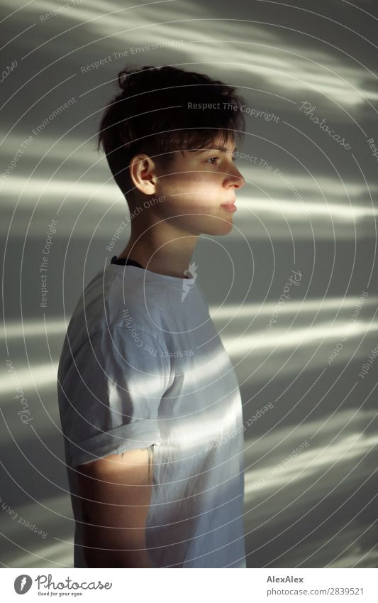Portrait of a young woman with stripes of light Style Beautiful Life Room Young woman Youth (Young adults) 18 - 30 years Adults T-shirt Brunette Short-haired
