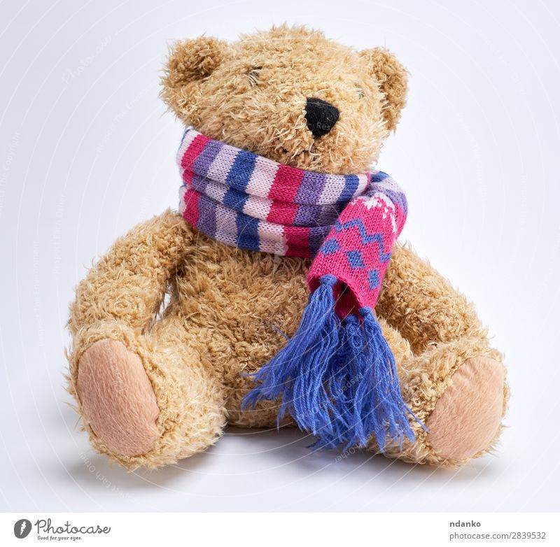teddy bear in a knitted multi-colored scarf Joy Child Infancy Scarf Toys Doll Teddy bear Old Sit Funny Cute Retro Soft Brown Yellow White Loneliness Bear