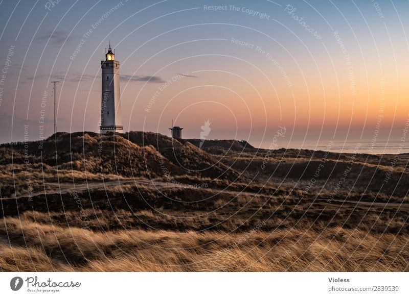 blavandshuk fyr lighthouse Lighthouse Blavands Huk Blavands Fyr Denmark Dune Marram grass Jutland North Sea Dugout Sunset Twilight Dark Atlantic Wall