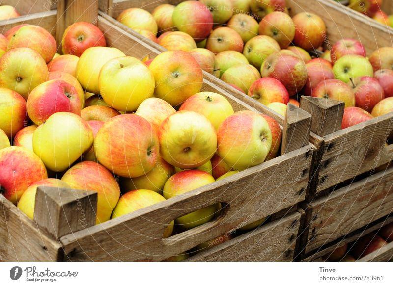 Red Black Autumn Healthy Natural Fruit Food Healthy Eating Fresh Sweet Many Round Apple Organic produce Juicy Sense of taste