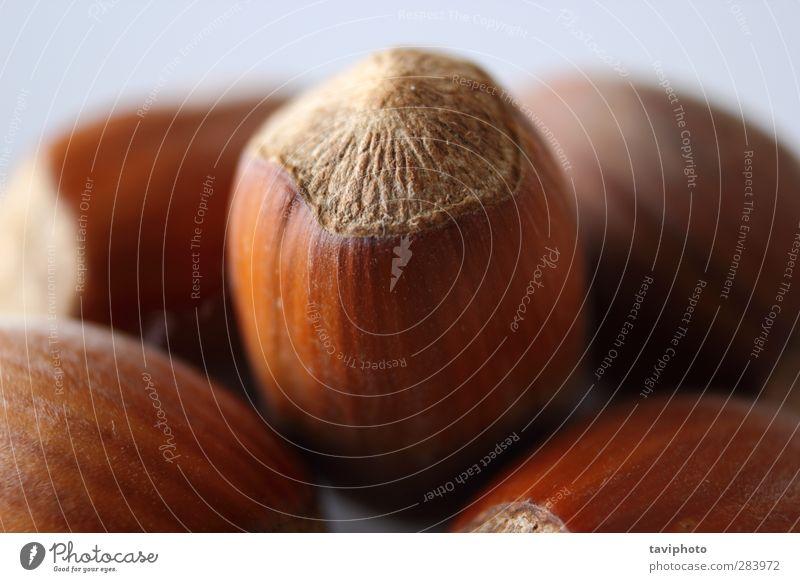 detail of a hazelnut Plant Fruit Food Nutrition Delicious Breakfast Organic produce