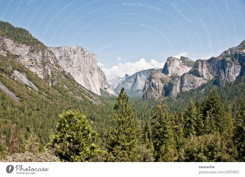Tunnel View Nature Landscape Plant Sky Tree Forest Rock Alps Mountain Peak Canyon Hiking Far-off places Natural Beautiful Adventure Vacation & Travel