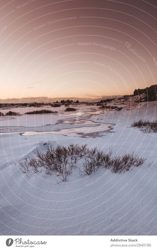 Thingvellir, Iceland Settlement Plain Snow Winter Valley scenery Landscape Rural Nature Tourism North Vantage point Idyll Seasons Tree Range Covered Destination