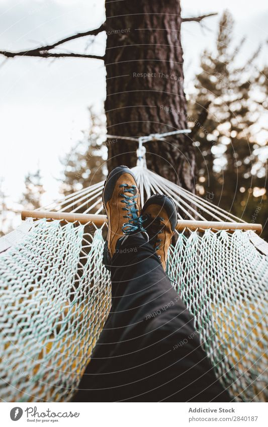 Female feet in hammock Woman Hammock Forest Relaxation Peace Tourism Morning Freedom Idyll Resting Lie (Untruth) coniferous Tree enjoying Feet tranquil
