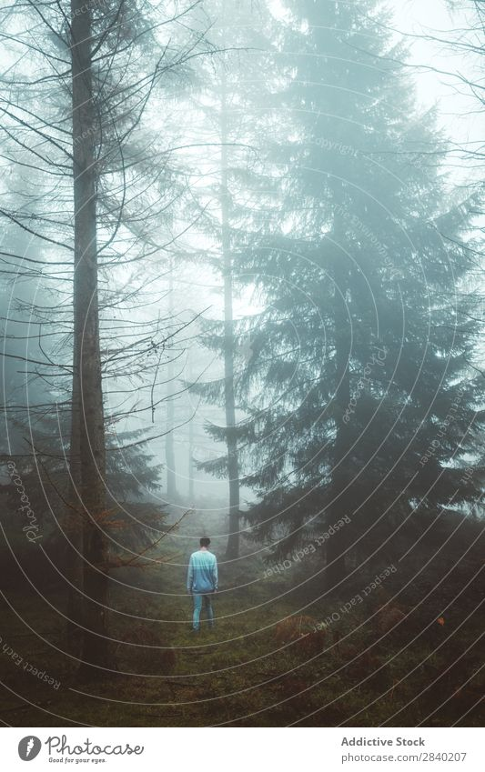 Man Walking Through Foggy Forest A Royalty Free Stock Photo From Photocase
