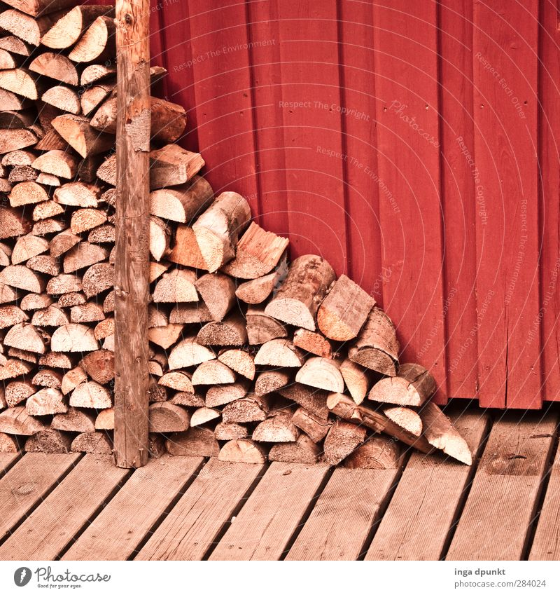 Winter Wood Natural Stack Heat Firewood Supply Woodcutter