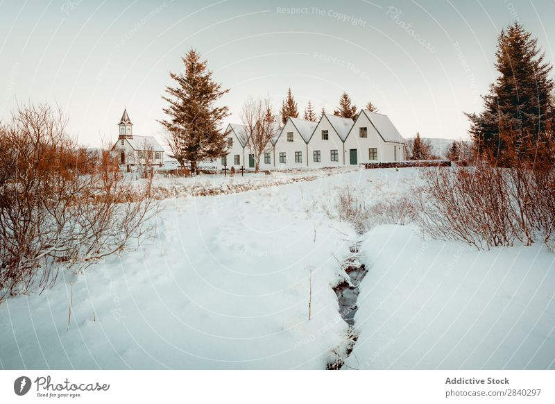 Houses in snowy plain Settlement House (Residential Structure) Plain Snow Winter Valley scenery Landscape Rural Nature Tourism North Vantage point Idyll Seasons