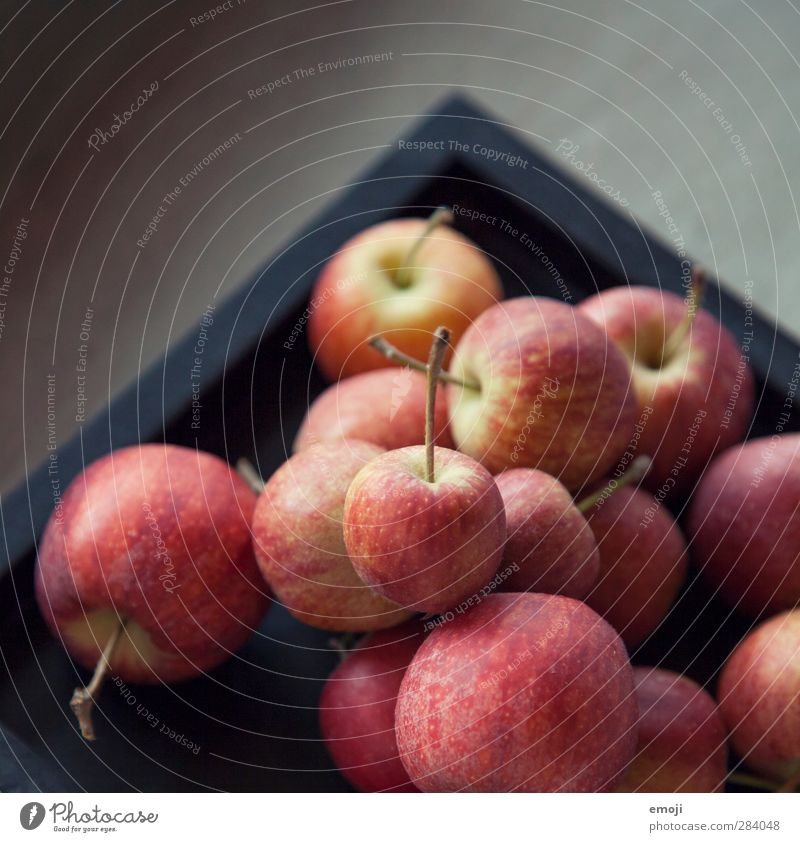 small apples Fruit Apple Nutrition Picnic Organic produce Vegetarian diet Diet Fresh Healthy Delicious Colour photo Interior shot Close-up Detail
