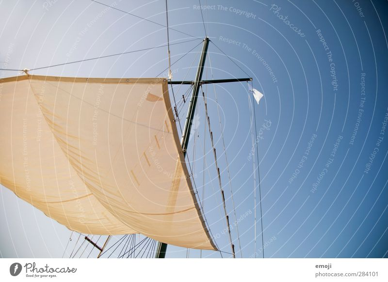 air Environment Nature Sky Sky only Cloudless sky Summer Wind Bright Blue Sailing Sailboat Sailing ship Rag Colour photo Exterior shot Deserted Copy Space right