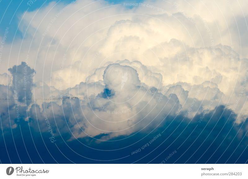 Cloudscape Sky liberty Light (Natural Phenomenon) Wallpaper Cumulus Wind Raincloud Weather congestus water steam Meteorology Soft Cumulunimbus cloud Cyan Nature
