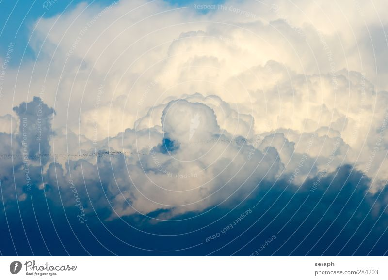 Sky Nature Clouds Environment Bird Weather Wind Wild Soft Wallpaper Smooth Flock Cyan Atmosphere Migration Airy
