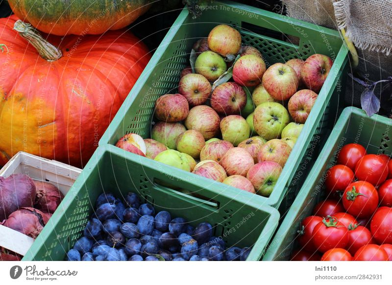 weekly market Food Vegetable Fruit Apple Nutrition Blue Multicoloured Yellow Green Orange Pink Red Vegetable market Greengrocer Box of fruit