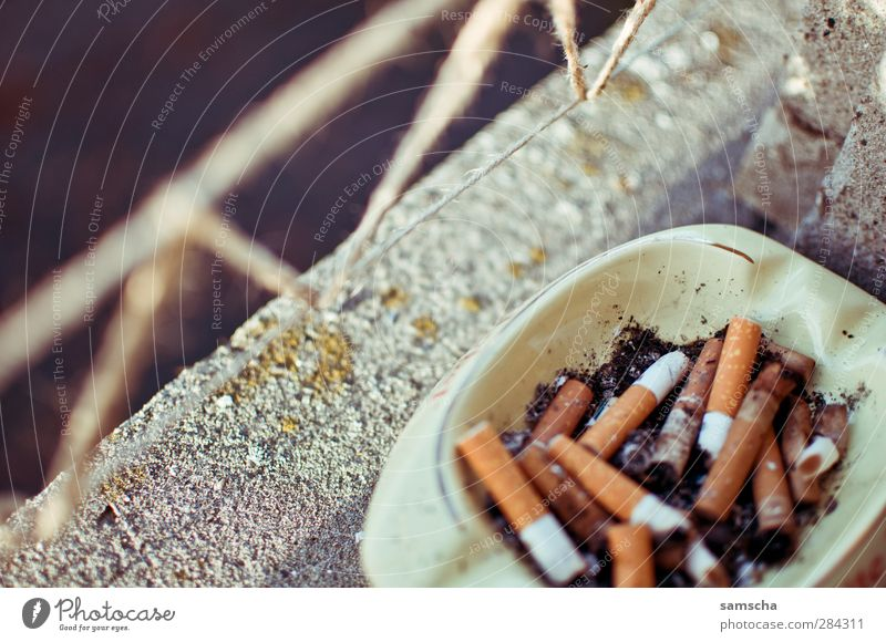 Window Healthy Smoking Tobacco products Cigarette Disgust Addiction Window board Ashes Filter Ashtray Lighter Smoky Windowsill
